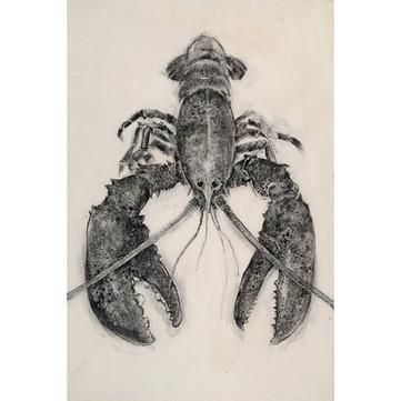 Vertical Lobster