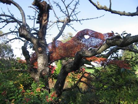 Cherry Tree Dancer 2