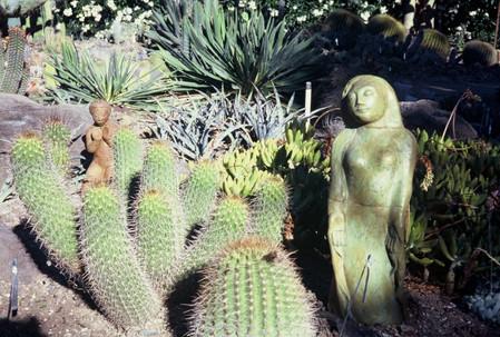 Cactus Guardian