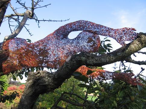 Cherry Tree Dancer 2 Closer View