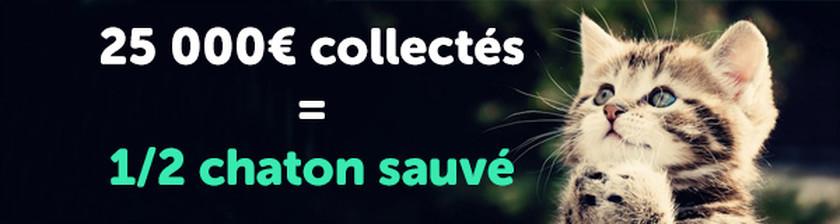 25 000€ collectés = 1/2 chaton sauvé