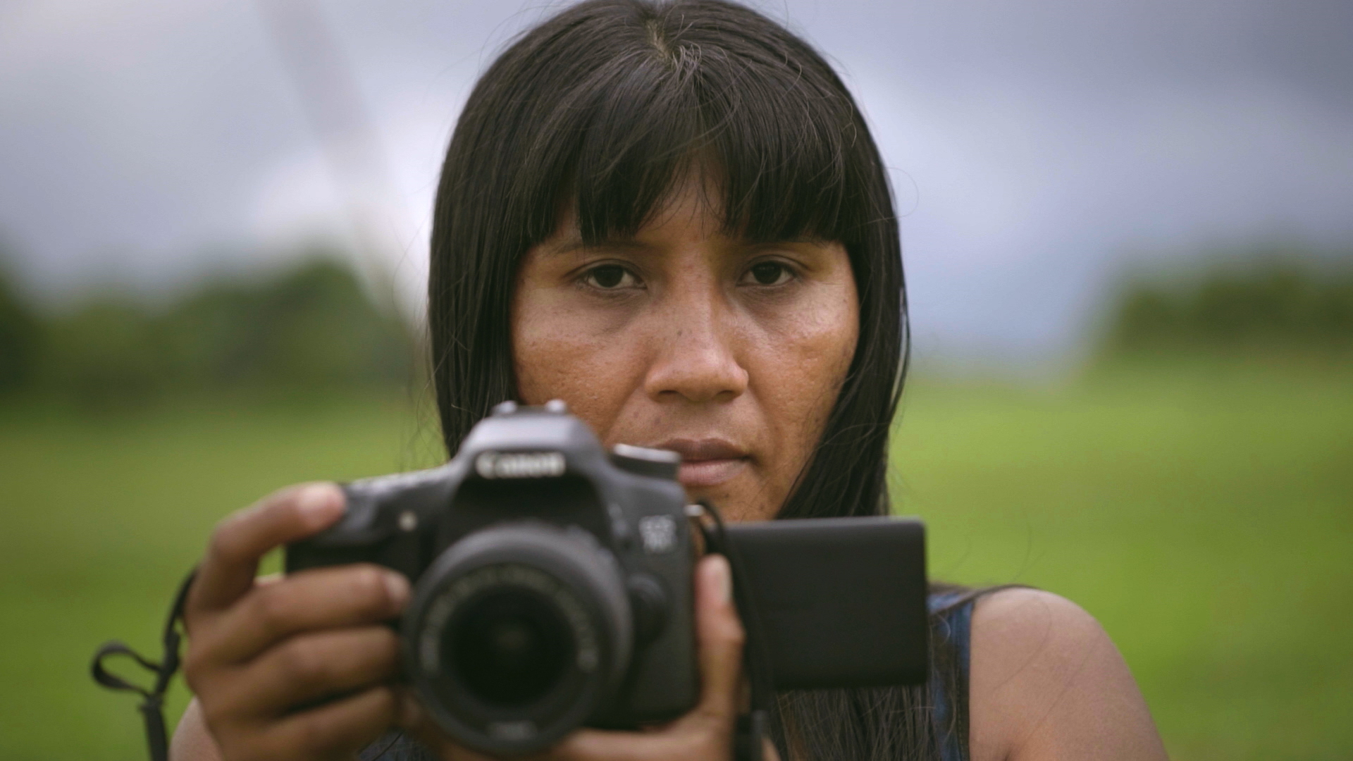 Floresta iluminada - Xingu
