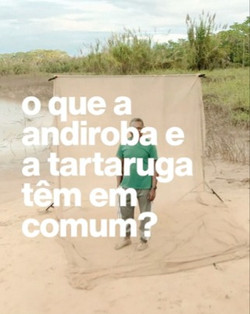 Natura - Amazônia Viva