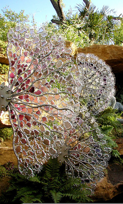 gorgonia fans 2.jpg