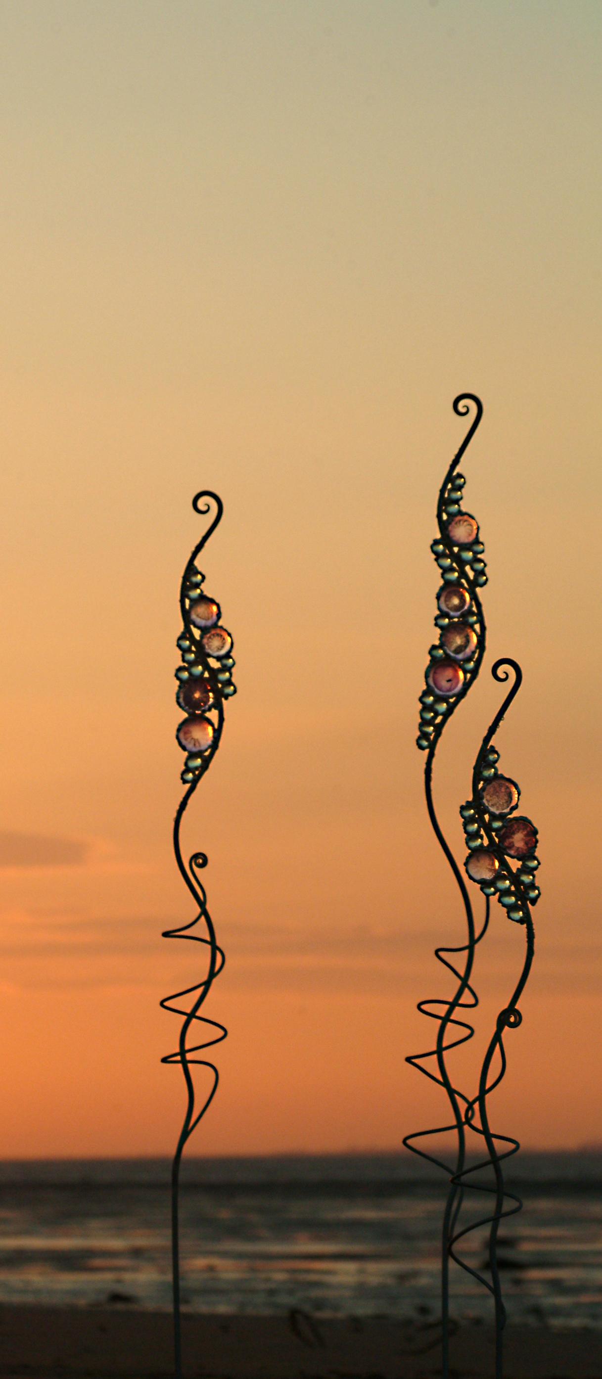 squig sunset copy.jpg