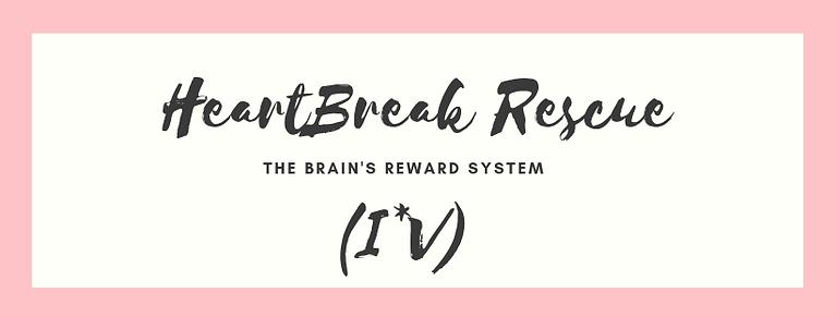 Rewards System.png