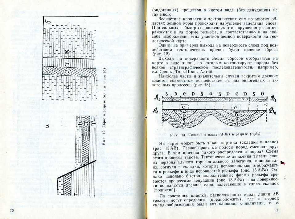 1 (37).jpg