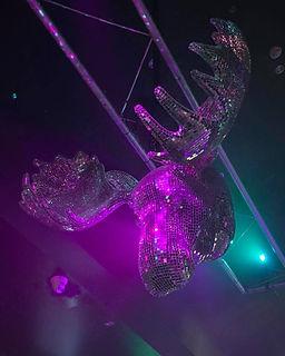 Mooseheads Disco Ball