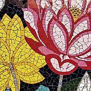 Toora Lotus