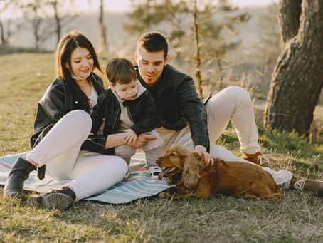 Tips for Moving with Kids and Pets