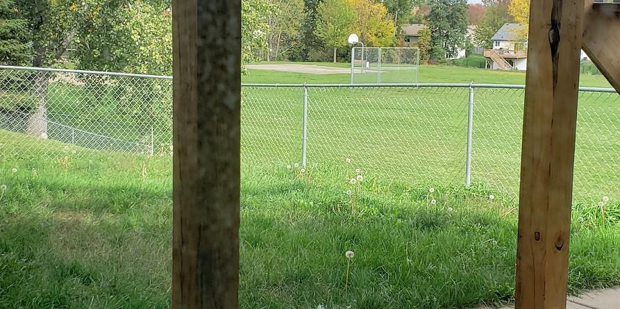 fenced-back-yard.jpg