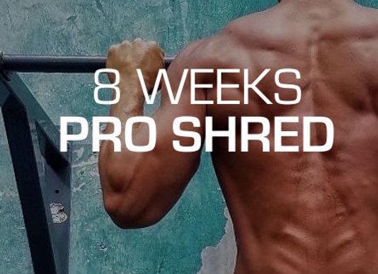 *FULL BODY SHRED (8 weeks)