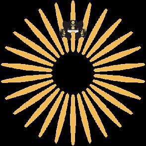 Light Coaching Icon_bottom@2x.png