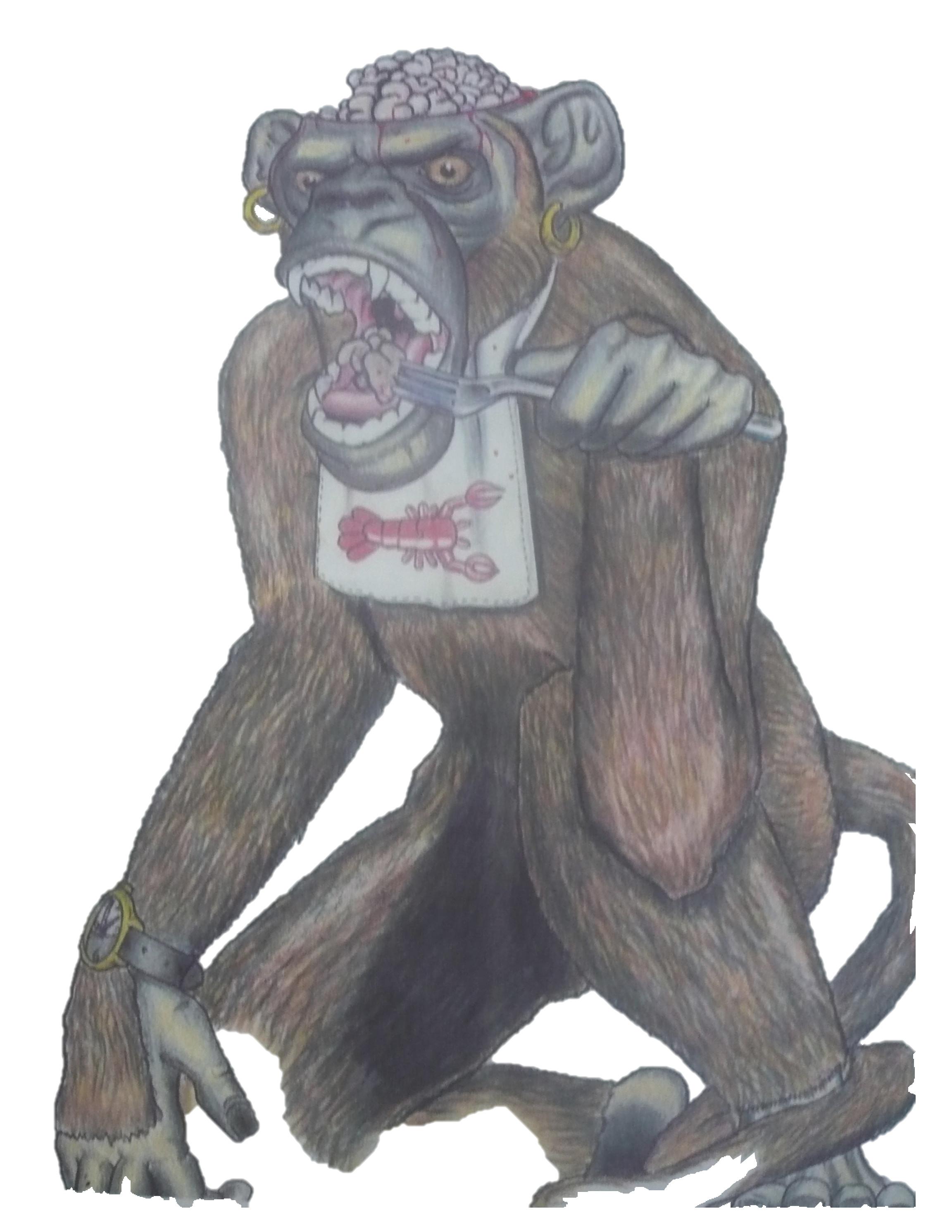 monkey+brains.jpeg