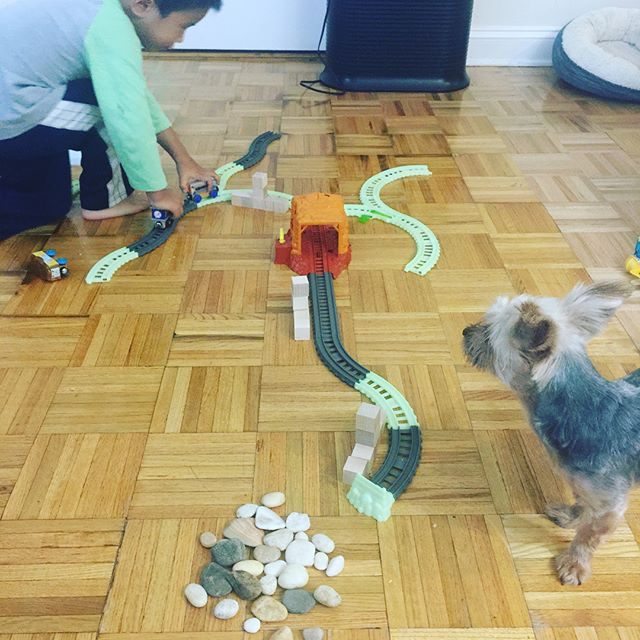 A boy with his trains and doggie..jpg