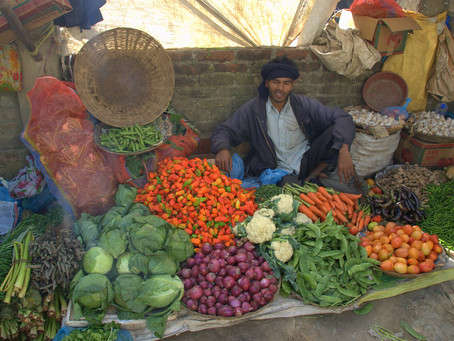 Universalizing a Basic Income for the Informal Sector