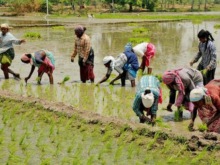 Agriculture Reform Bills, 2020