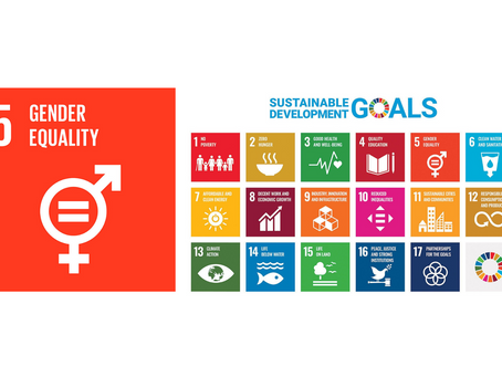 Efficacy of Affirmative Action in Achieving Gender Equality and Goal 5 of the SDGs