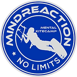 Logo Mindreaction.png