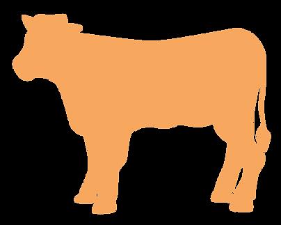Origine veau bretagne label
