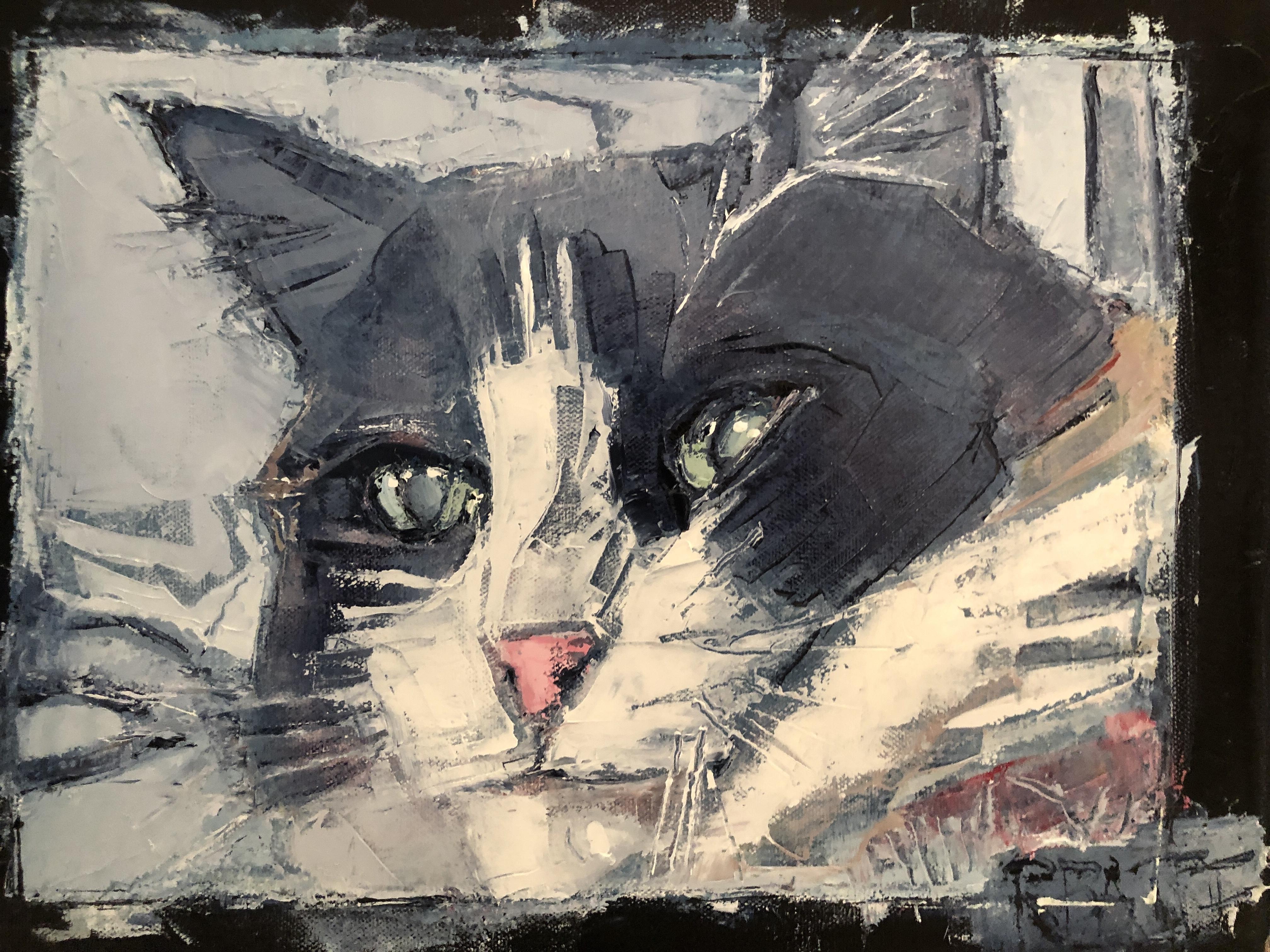 Andrea's Cat