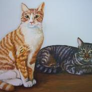 alex and kitty belle.JPG