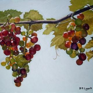 rs grapes 2.jpg