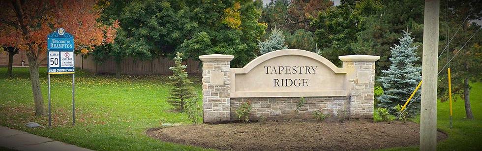 TapestryRidge-Photoshopped_edited.jpg