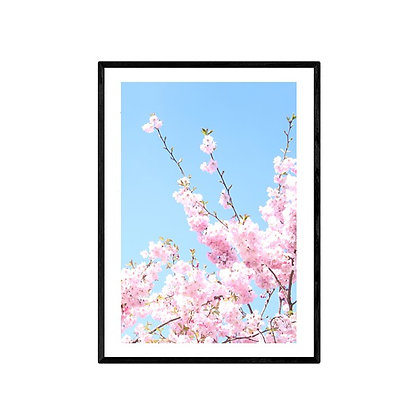 Blossoms Photo Print