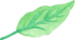 watercolor-leaf-4.png