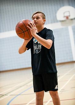 Luka 3 Basket.png