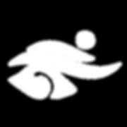 logo soins énergétiques.png