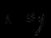 Lapoléon noir.png
