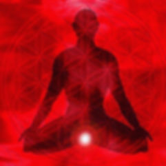 The Root Chakra governs safety, security