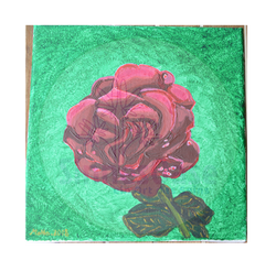 Rote Rose Rosengarten