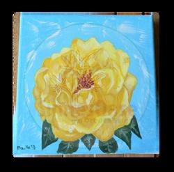 Rose gelb Rosengarten