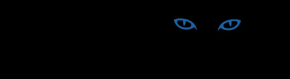 domedia logo