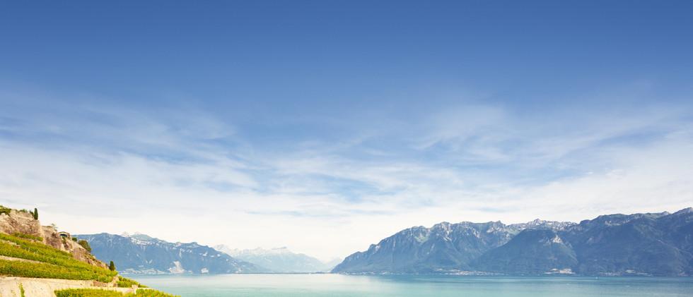 Canva - Vineyards at Geneva lake.jpg