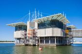 The Lisbon Oceanarium.