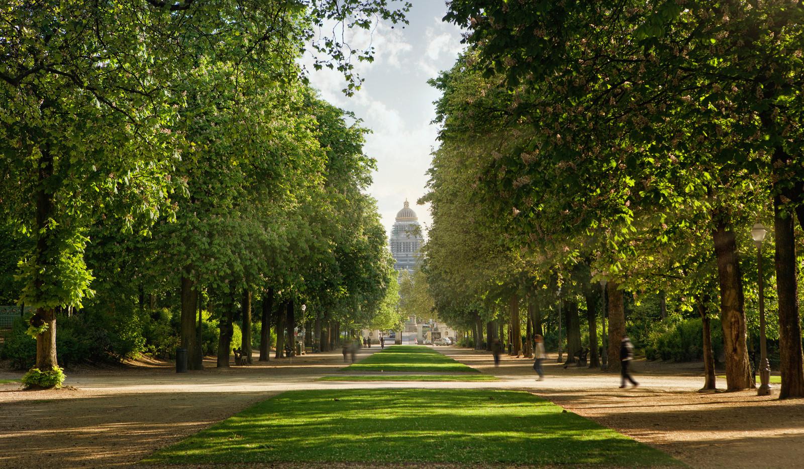 Canva - Royal park in Brussels.jpg