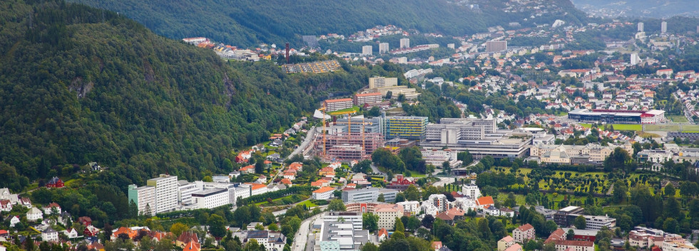 Canva - Bergen city.jpg