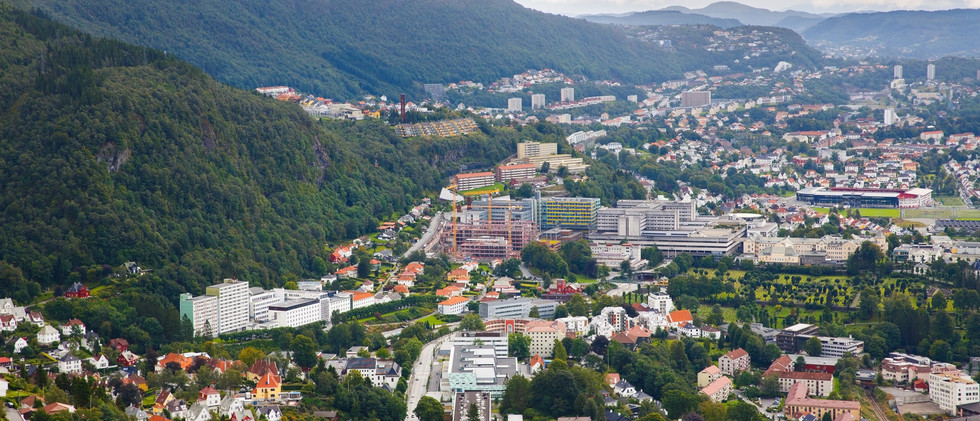 Canva - Bergen city.jpg