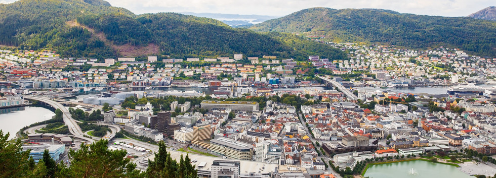 Canva - Bergen city (2).jpg