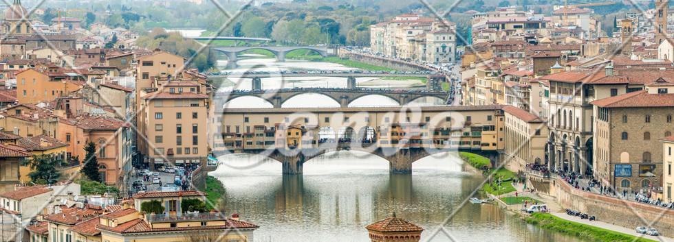 Canva - Panorama of Florence.jpg