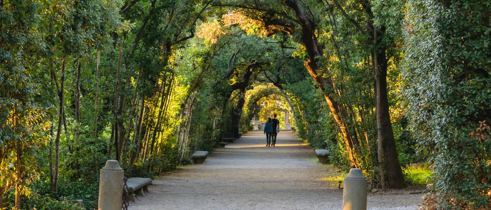 Canva - Boboli gardens in Florence, a co