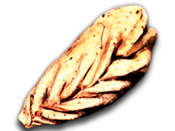 HıngalBili