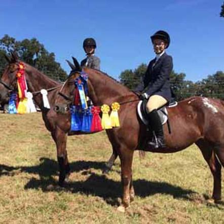 Haile Equestrian Bi-Annual Home Show