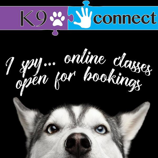 online classes.jpg