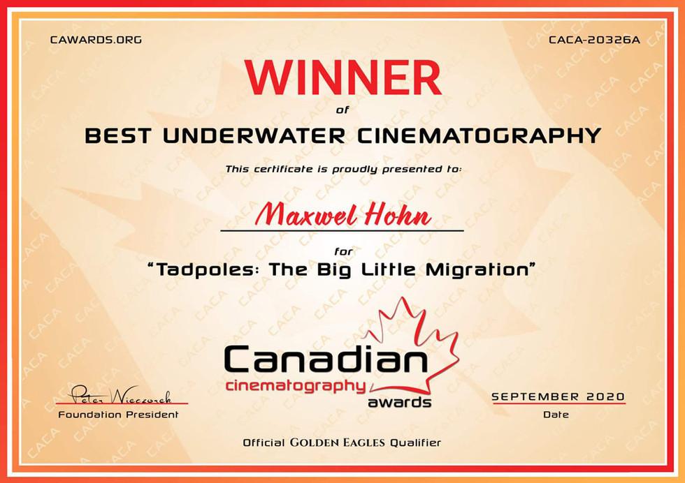 Maxwel-Hohn-Underwater-Cinematography-Aw