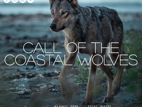 Call Of The Coastal Wolves